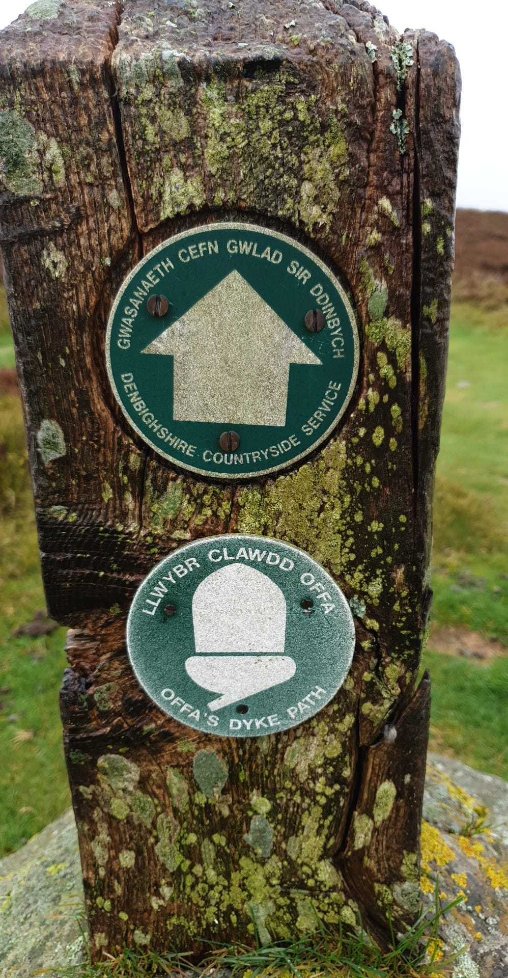 Offas Dyke Path Northern Quarter - Guided  Run Challenge